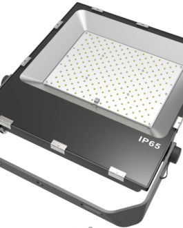200W PIONEER SERIES FLOOD LIGHT