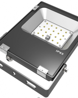 20W/30W PIONEER SERIES FLOOD LIGHT