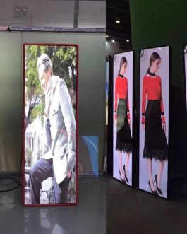 P3 Poster/Mirror led screen display